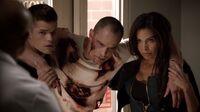 Teen Wolf Season 3 Episode 5 Frayed Max Carver Brian Patrick Wade Felisha Terrell Aiden Ennis Kali Vet Clinic