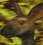 Tekken 2 roger portrait alternate