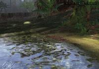 Tk4 jungle
