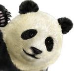 PANDA TK5DR