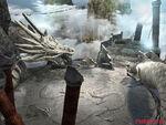 Dragons nest