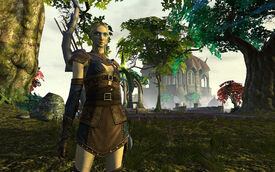 High Elf-Female withbow1.jpg