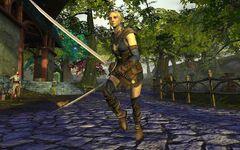 Elven Blade Dancer-1.jpg