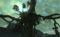 Scarwood Reach-screen 04.jpg