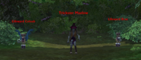 Trickster maelow.png