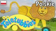 Teletubisie Po Polsku -58 DOBRA JAKOŚĆ (Pełny odcinek)