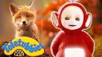 ★Teletubbies_English_Episodes★_Fox_Cubs_★_Full_Episode_-_HD_(S11E19)