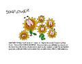 Kellogg's Rice Krispies Sunflower Don Bluth Cel (Version -2)