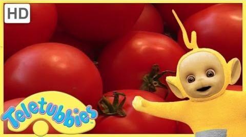 Teletubbies_Full_Episode_-_Making_Salad_Teletubbies_English_Episodes