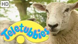 Teletubbies_Herding_Sheep_-_HD_Video