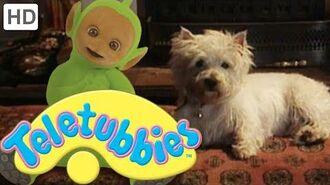 Teletubbies-_Dirty_Dog_-_HD_Video
