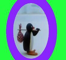 Pingu Cover.jpg