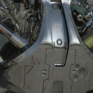 SCC DVD Special Endo 888 chest closeup.JPG