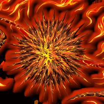 Flame Urchin