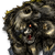 Chiton icon.png