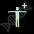 Recode DNA