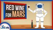 The Secrets to Living on Mars- Wine and Aerogel? - SciShow News