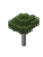 BirchForest6.bo3