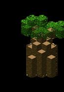 Baobab2.bo3