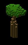 AncientSwampTreeLarge6.bo3