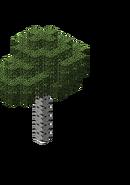BirchForest2.bo3