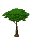 AncientSwampTreeHuge2.bo3