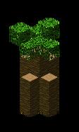 Baobab1.bo3