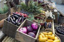 Terra Nova fruit and vegetables4