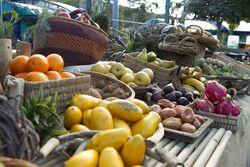 Terra Nova fruit and vegetables2.jpg