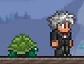 Alga mascota 1