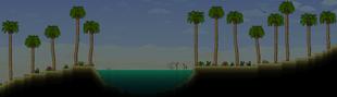 Oasis Desert