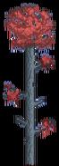 Baum-Crimson