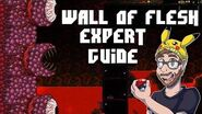 How to defeat the wall of flesh solo on expert - Terraria 1