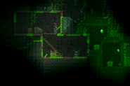 Double Shrines in a house