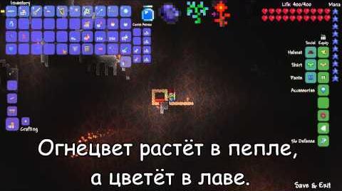 Terraria._Зелье_Обсидиановой_кожи_(Obsidian_Skin_Potion)