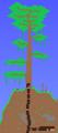 Árbol viviente (minimapa)