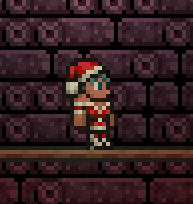 Mrs. Clause Outfit