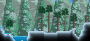 Bioma helado superficie
