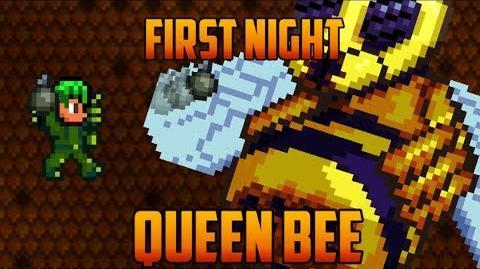 Terraria - Queen Bee first Night Speedrun Challenge