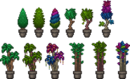 Placed Potted Trees