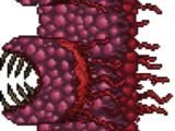 Fleischwand
