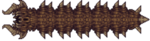 Desert Scourge.png