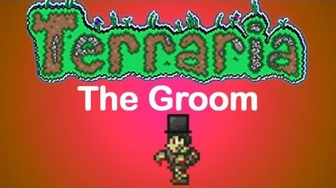 Terraria_-_The_Groom_Top_Hat