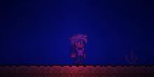 Collar de medusa