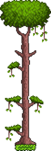 Tree (Jungle).png