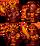 地狱装甲骷髅