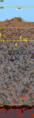Terraria World Layers.png