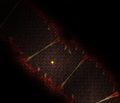 Crimson Ligaments (Terraria Overhaul).png