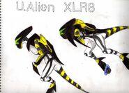 Xlr8 ultimate1