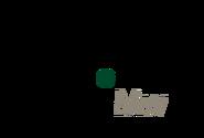 Logo 6 3 MW